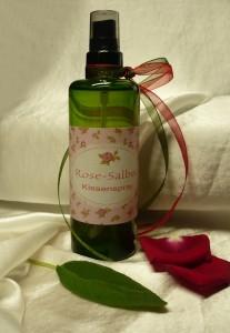 Rose-Salbei-Geschenktipp