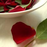 Rosenblütenblatt-Salbeiblatt