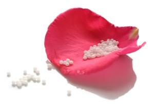 Rosenblütenblatt mit Globuli