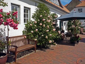 seaside garden Rosarium Glücksburg