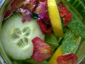 Detox-Wasser mit Gurke, Zitrone, Minze und Rosenblütenblättern